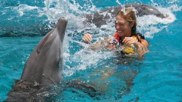 Inot cu delfinii in Punta Cana