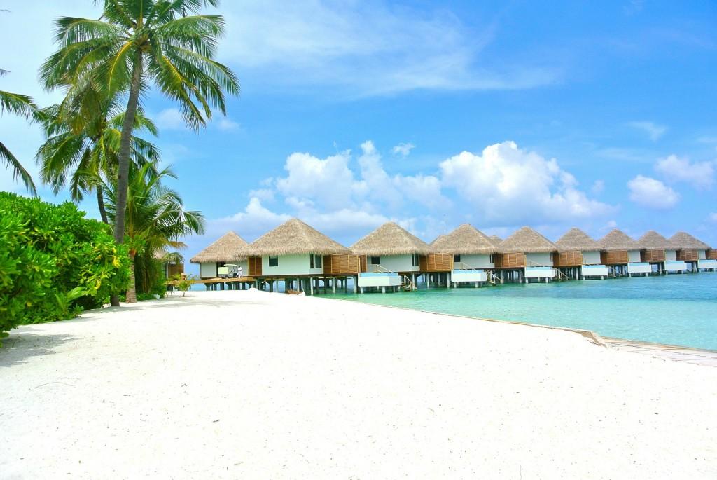 In Maldive exista numeroase complexe ce ofera facilitati si conditii deosebite turistilor