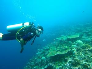 Scuba divingul este o activitate extrem de populara in Maldive