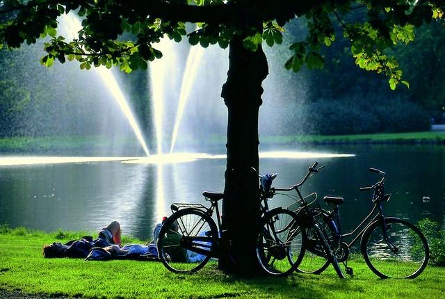 Oras al canalelor si bicicletelor, Amsterdam te va face sa il iubesti, chiar si in ciuda vremii capricioase si a ploilor frecvente.