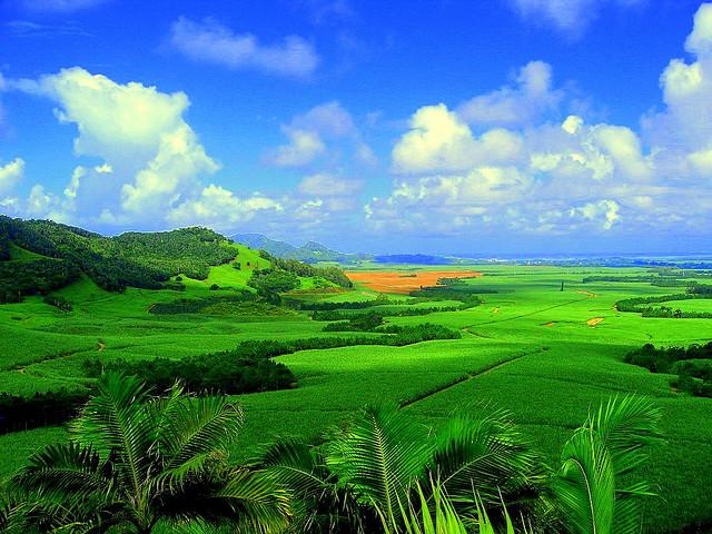 Mark Twain spunea ca Mauritius este insula care a inspirat Paradisul