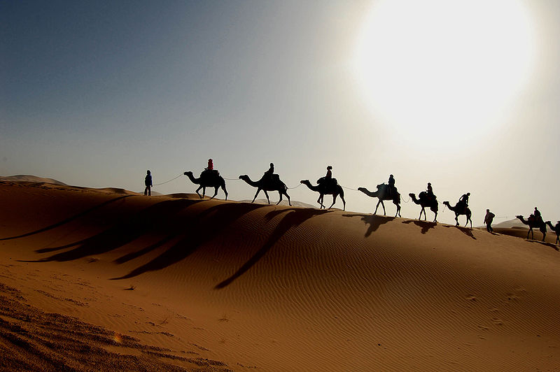 Tunisia este o tara extraordinara, in care cultura europeana, africana si orientala se contopesc perfect.