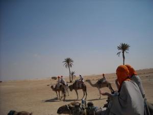 "Experienta ""extrema"" a zilei a fost plimbarea pe camile, prin desert."