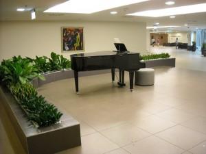 Apoi am ajuns la intrare: parcare privata, aripa Durer (4*), intrare moderna, plante ornamentale, tablouri frumoase, un pian cu coada...
