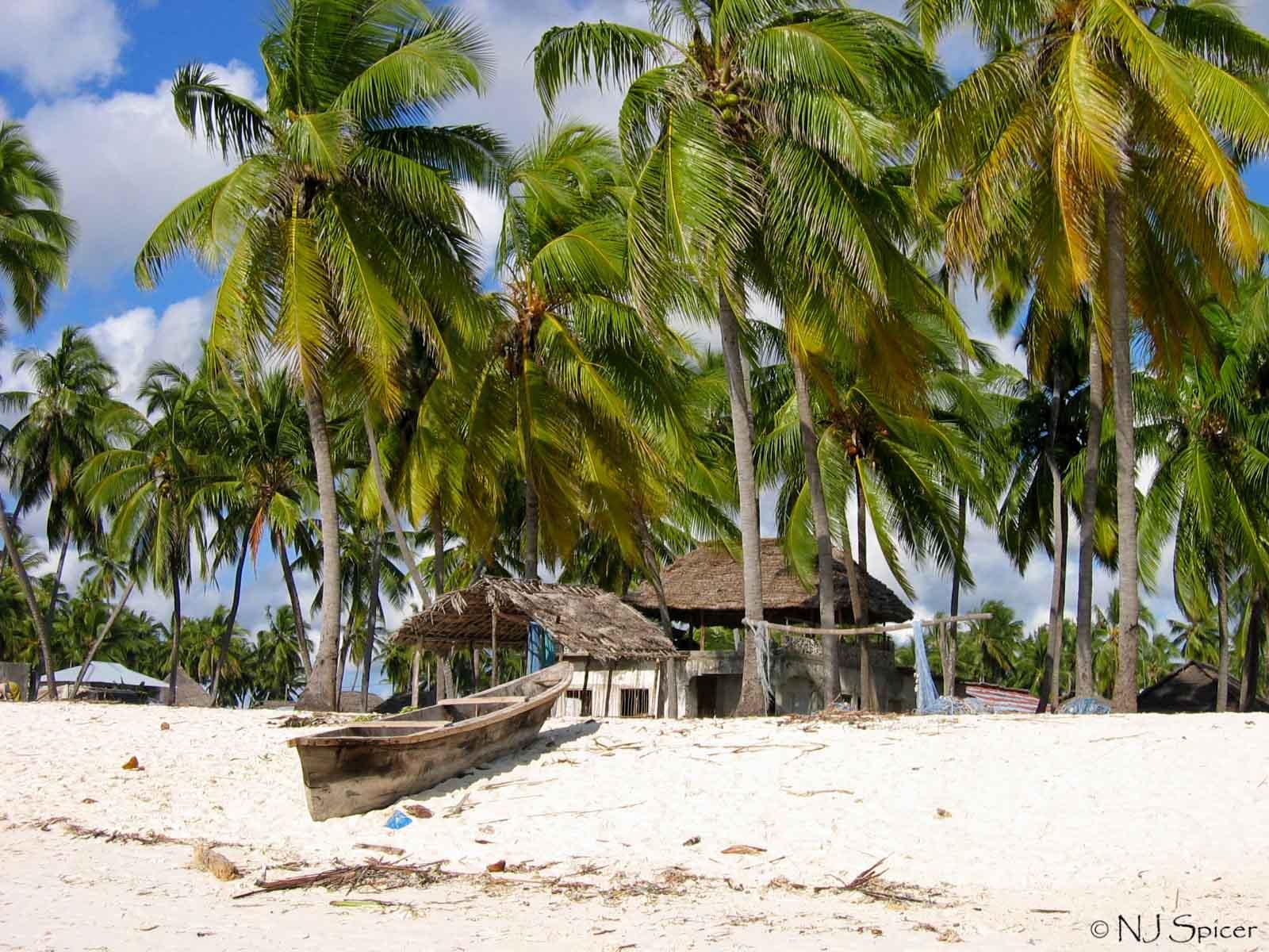 O adevarata minune a naturii este Zanzibar, un loc populat de catre sclavi in trecut, cu peisaje superbe.