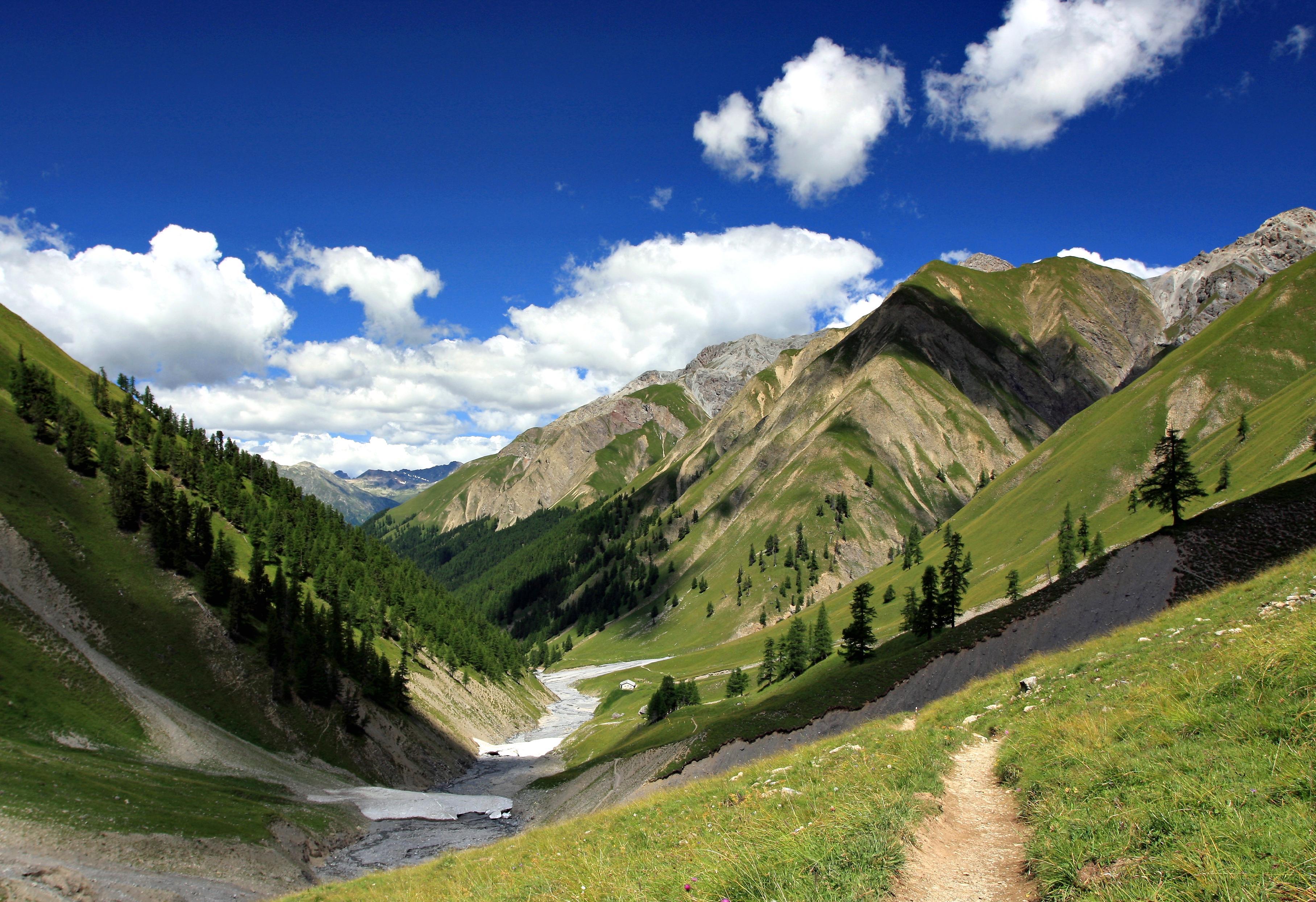 Alpii Elvetieni