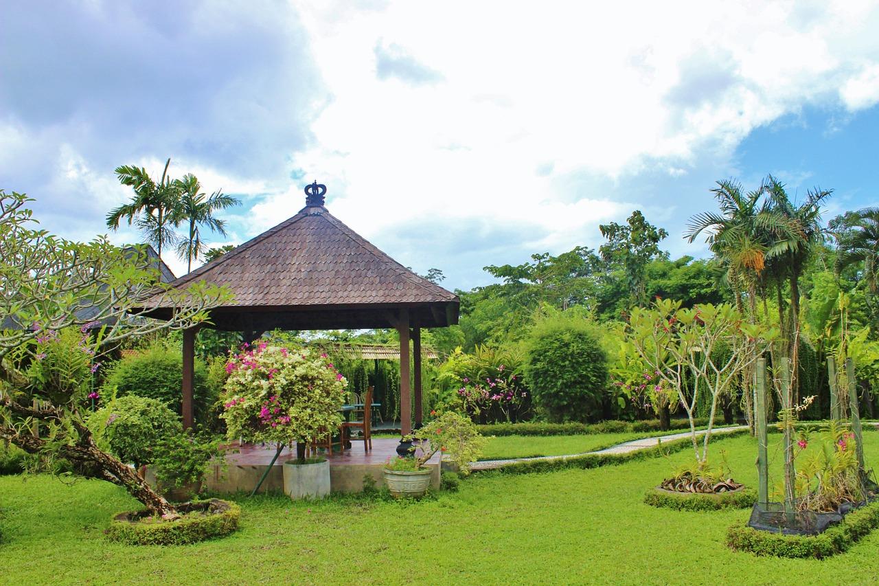 Vegetatie in Bali