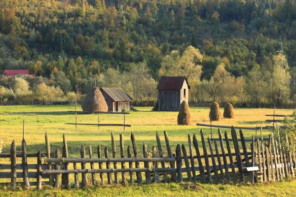 Bucovina - Peisaj
