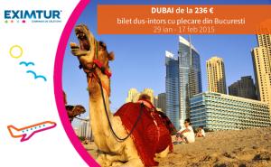 Oferta bilete de avion Dubai