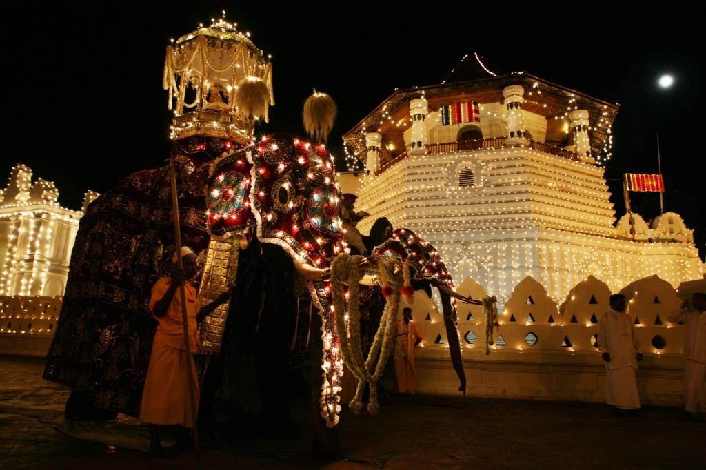 Elefanti la Kandy Esala Perahera