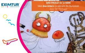 Oferte bilete de avion Sao Paulo