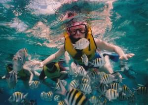 Indonezia este cunoscuta ca destinatia ideala pentru sporturile de apa cum ar fi snorkeling, scuba diving sau surfing