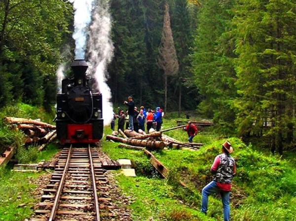 Trenul Mocanita in Sovata
