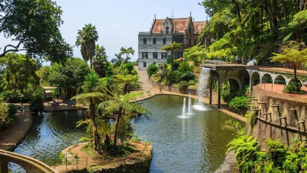 Funchal Madeira Portugalia