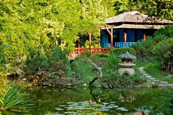 gradina-botanica-cluj_23229040