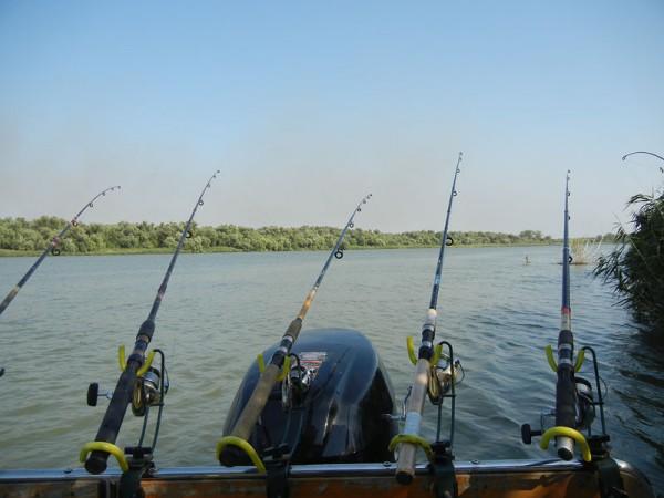 Pescuit in Delta Dunarii. Permis de pescuit in Delta