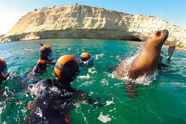 Lei de mare in Punta Loma- croaziera